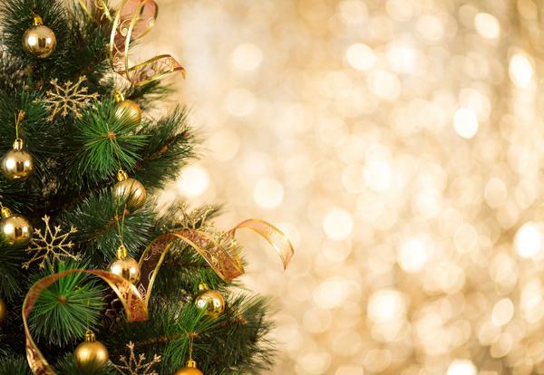 Wie Entstand Der Weihnachtsbaum.Wie Der Weihnachtsbaum In Unsere Wohnzimmer Kam